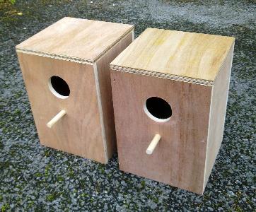 Pair Of Cockatiel Parakeet Nesting Boxes 11 Quot X 8 Quot X 8